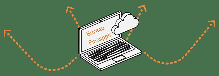 Pineappli Bureau