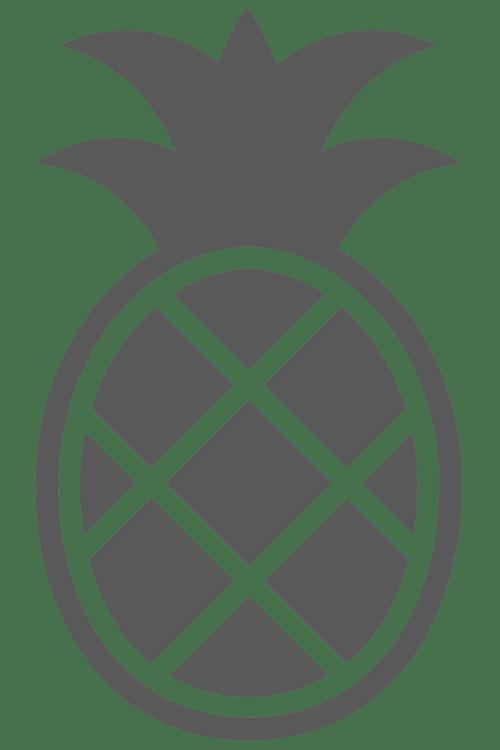 Pineappli Logo Gris
