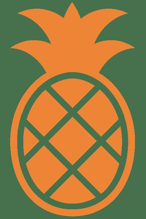 Pineappli Logo Orange